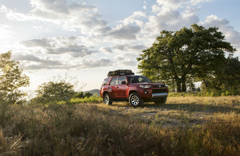 Does the 4Runner have a TRD version?