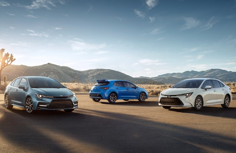 2020 Toyota Corolla family hanging out