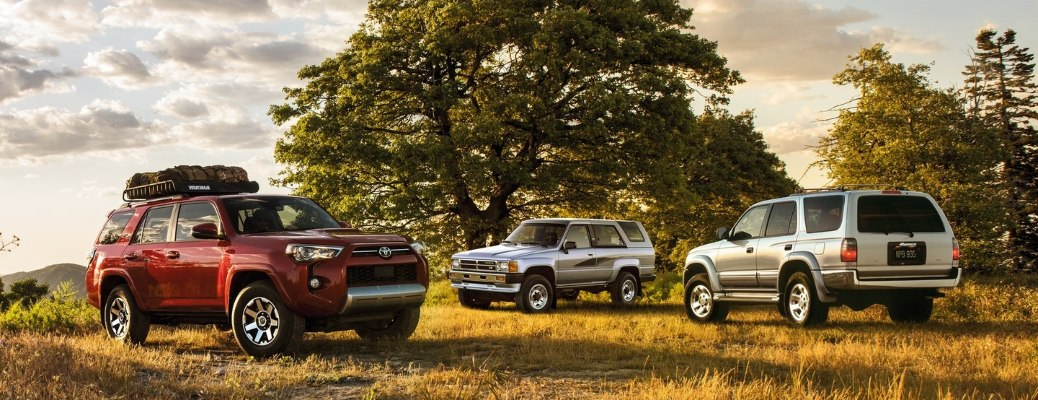 Three 2020 Toyota 4Runner vehicles hanging out under a tree
