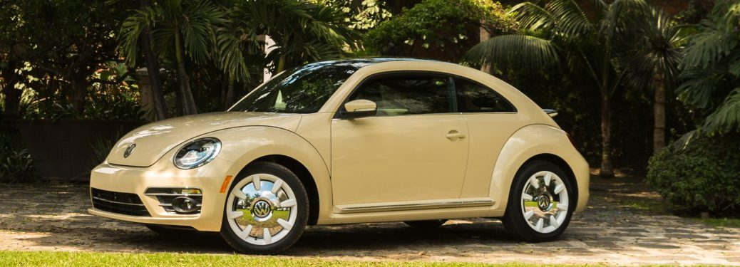 2019 Volkswagen Beetle Final Edition parked in front of a row of palm trees