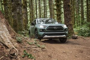 2020 Toyota RAV4 driving through the woods