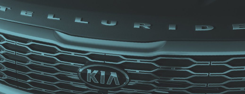 Monochromatic up-close photo of the 2020 Kia Telluride front badging