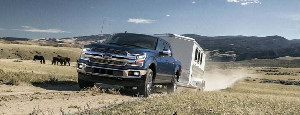 Blue 2020 Ford F-150 towing a horse trailer