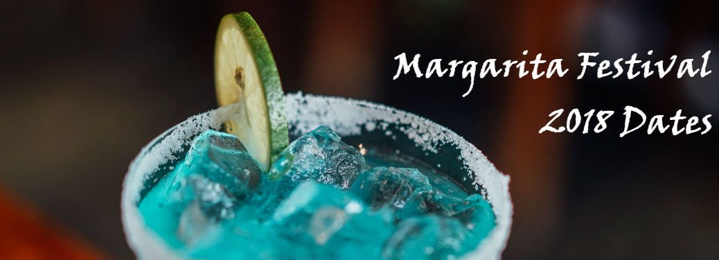 detail shot of margarita with lime in glass and salt on rim