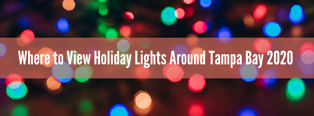 Outdoor Holiday Attractions and Light Shows Near New Port Richey