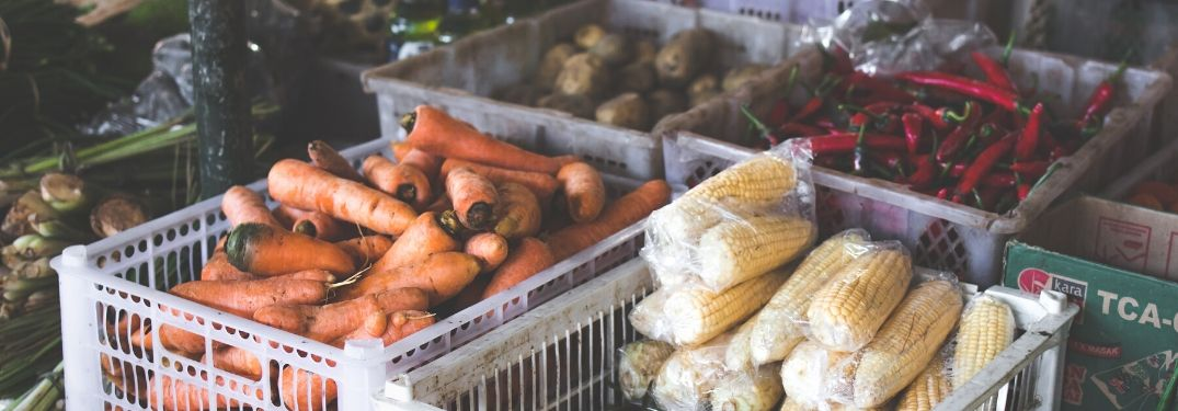 Where to Find Locally Grown Produce in the Tampa Bay Area for 2021