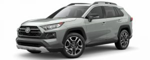 2019 Toyota RAV4 in Lunar Rock with Ice Edge Roof