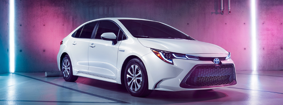 Will the Toyota Corolla be available as a hybrid for the 2020 model year?
