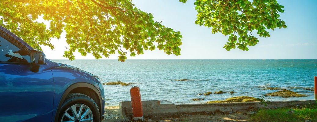 Car parked under tree with waterfront in background