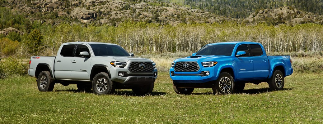 2020 Toyota Tacoma Blue and White parked in grass