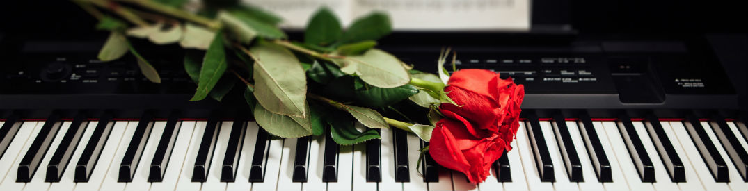 red rose on black and white piano keys