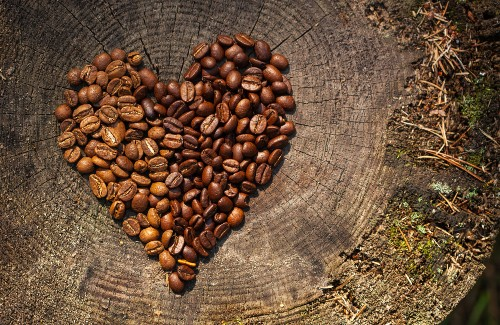 coffee beans in shape of heart on top of tree stump