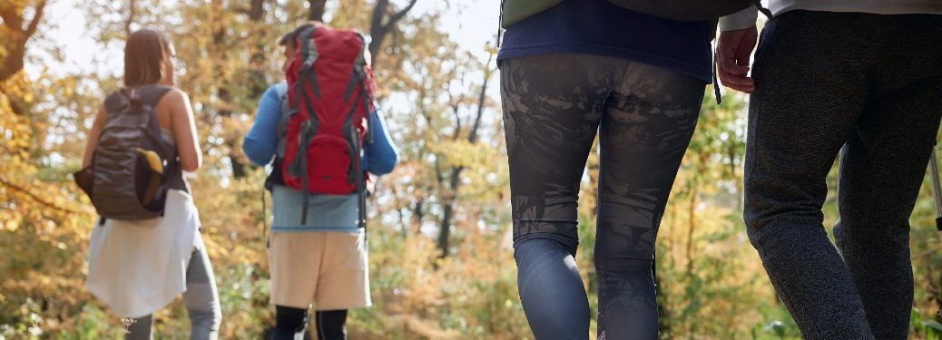 two couples hiking together on forest trail