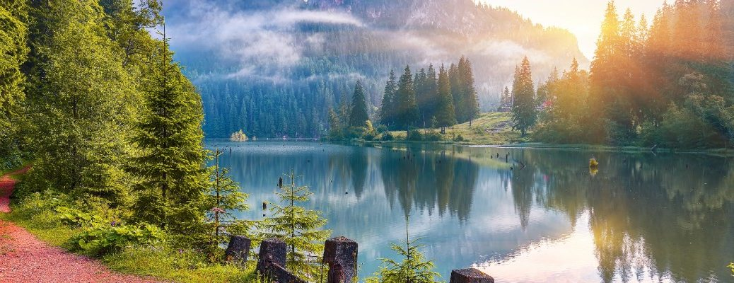 A stock photo of a lake and the surrounding nature.