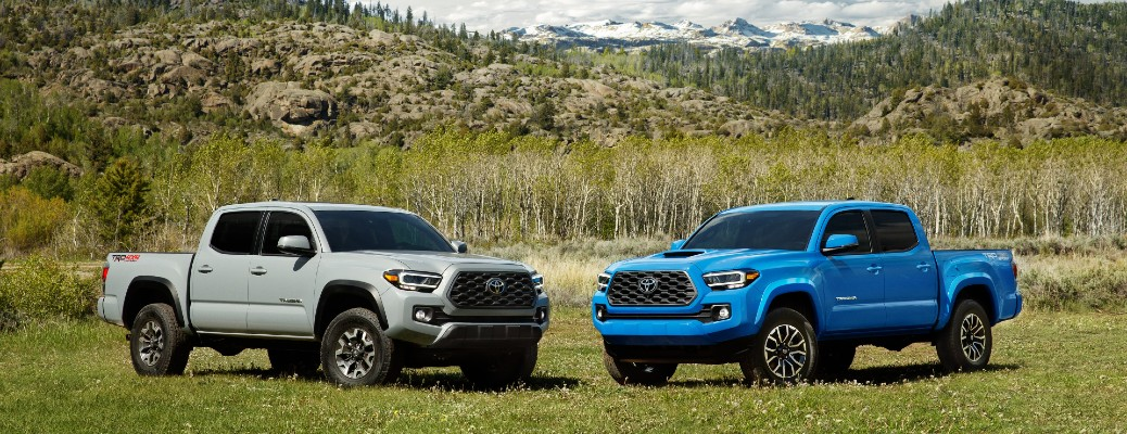 A silver and a blue 2020 Toyota Tacoma parked in a field with mountains in the background.