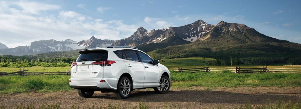 2018 toyota rav4 in front of mountains on a beach from rear