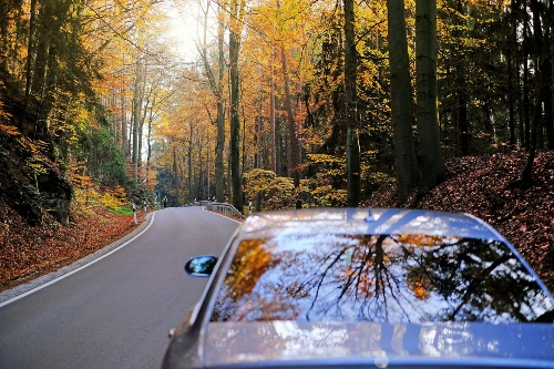 car driving in wooded road with fall colors