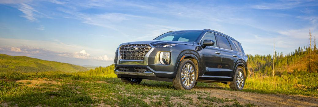 2020 Hyundai Palisade exterior front fascia driver side in field with blue sky