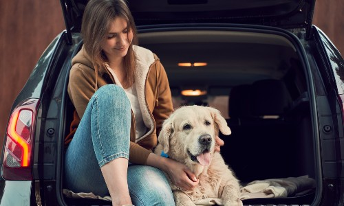 woman with dog in back of crossover