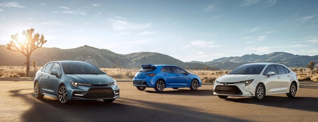 2021 Toyota Corollas parked together outside