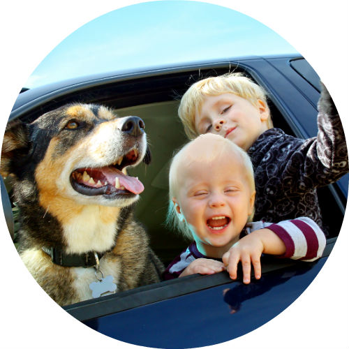 two blonde kids and dog looking out car window