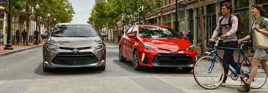 How does the 2019 Corolla L compare to the LE?