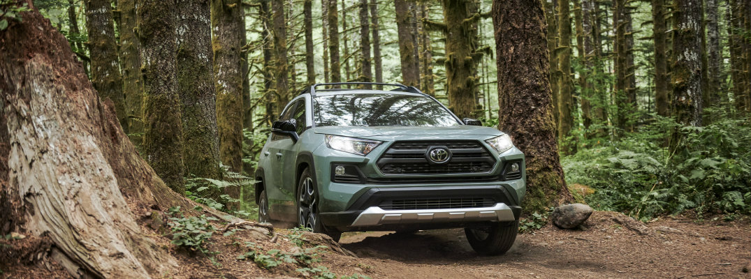 What colors does the 2019 Toyota RAV4 come in?