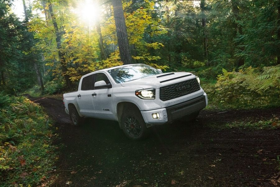2020 Toyota Tundra TRD Pro model on trail in woods