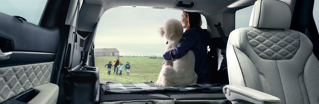 Which Hyundai vehicle is the best for a family?
