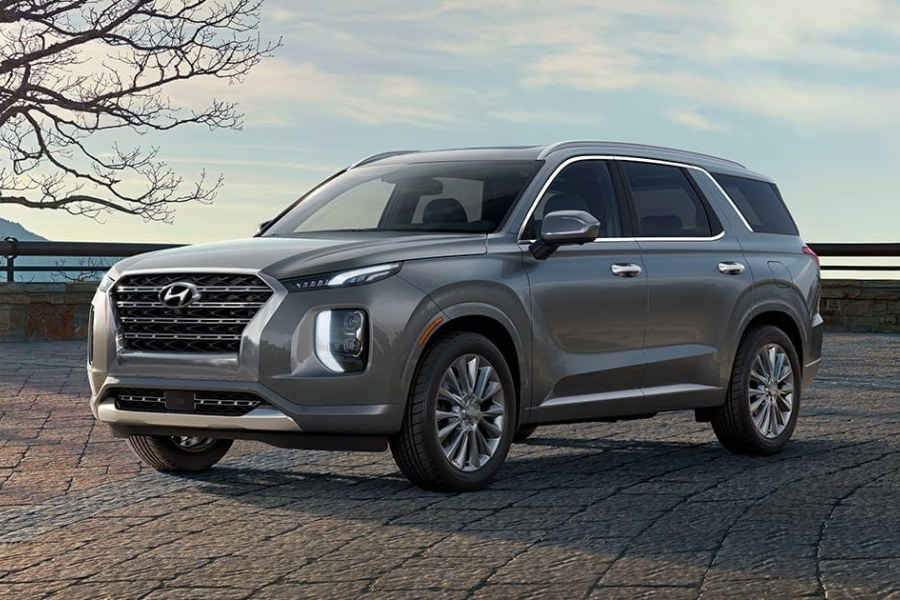 Rainforest 2020 Hyundai Palisade on a Brick Road