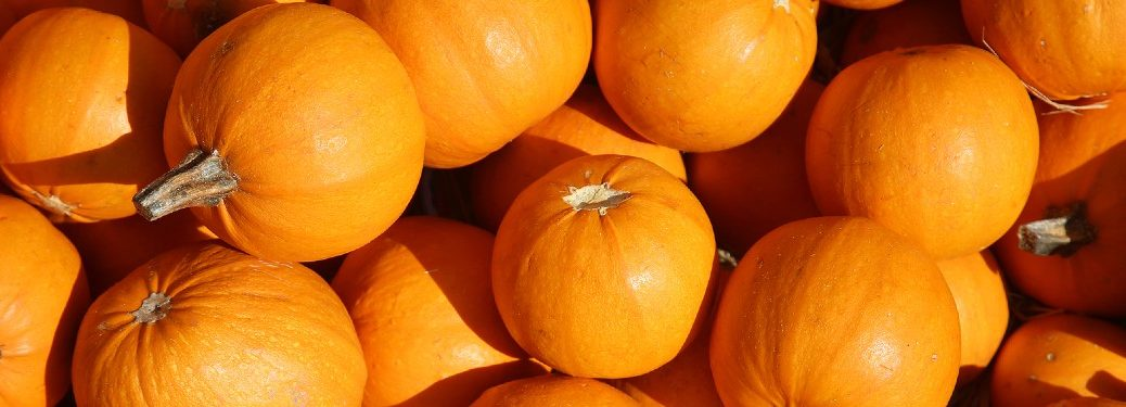 Small pumpkins piled on top of one another