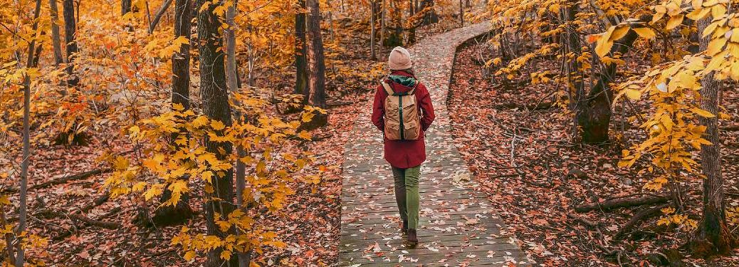 Woman walking through a forest during autumn