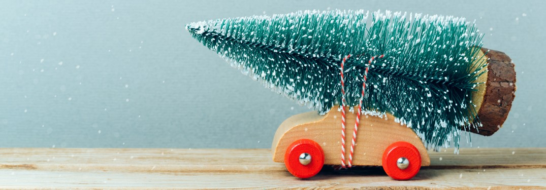 How to Drive a Christmas Tree Home with Your Car