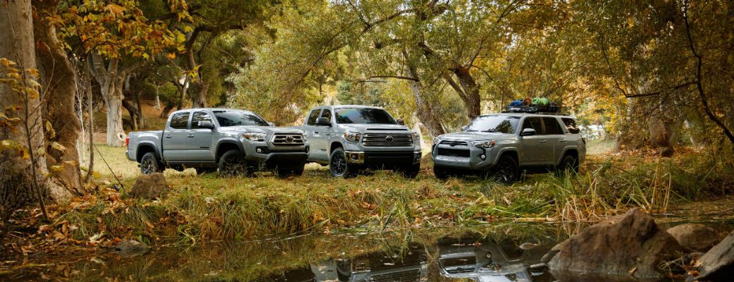 A photo of the three Trail Special Editions parked in a swamp.