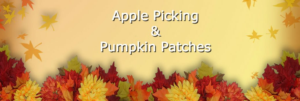 Apple and pumpkin picking in Limestone County AL