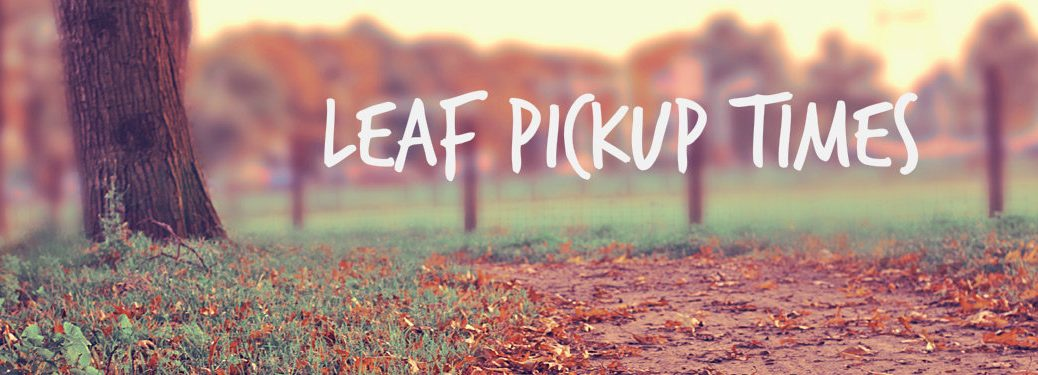 City of Decatur Fall Leaves Pick-Up Information