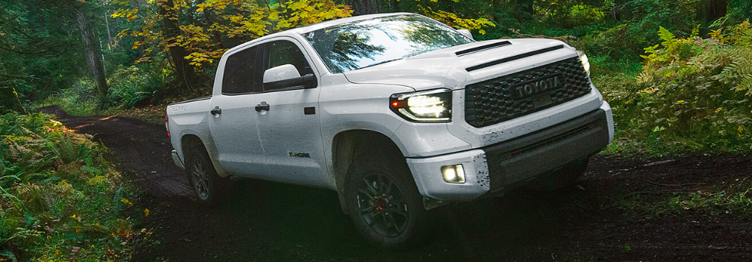 What Trim Options are on the 2020 Toyota Tundra?