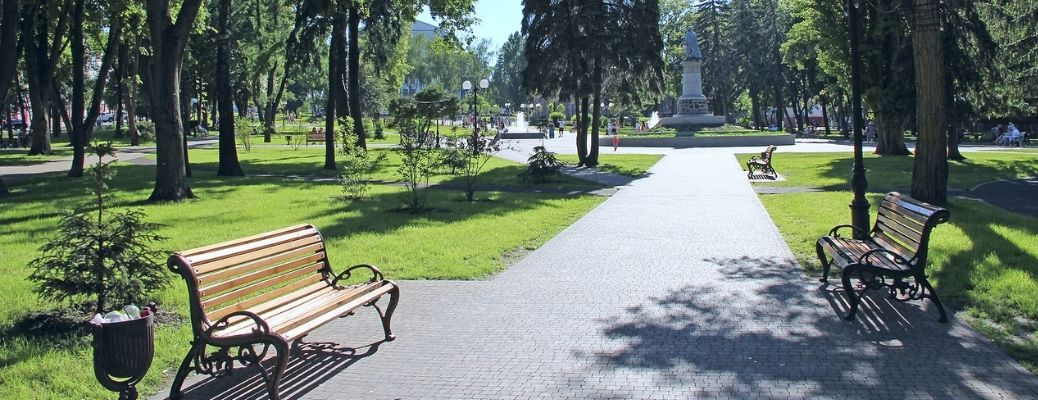 Park with wooden benches and lush greenery