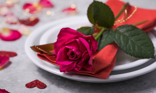 Rose on plate