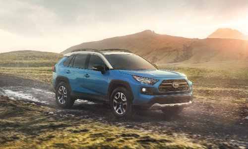 2019 Toyota RAV4 driving down dirt path with grass and mountains surrounding