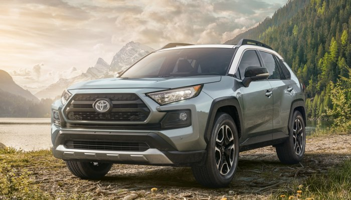 2019 Toyota RAV4 parked in front of a river