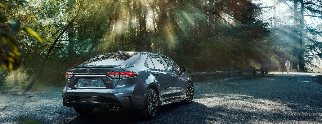 2021 Toyota Corolla in the forest