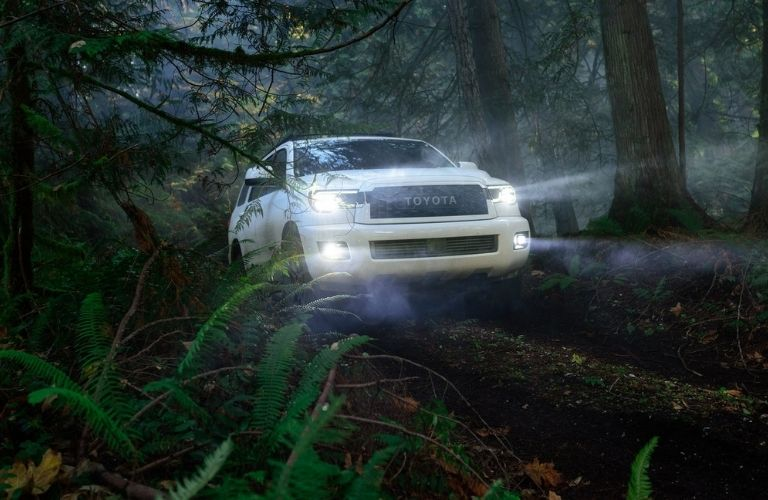 2021 Toyota Sequoia driving in a forest
