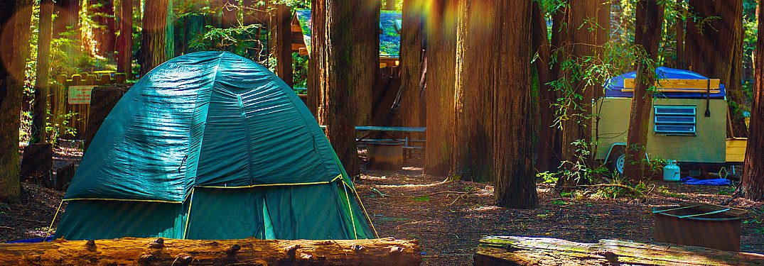 Find a campground in Northern California
