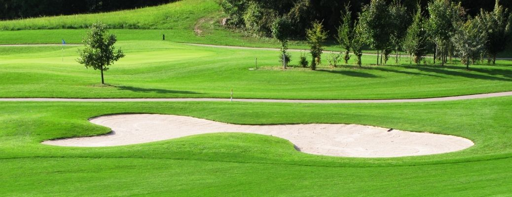 A golf course with lush greens