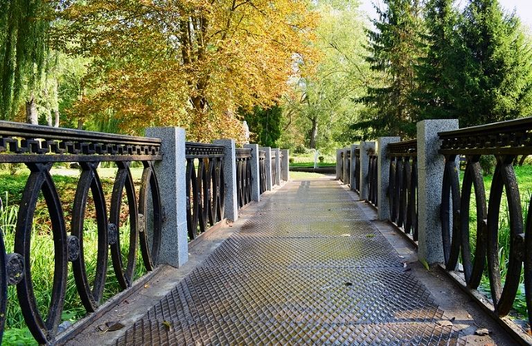 Park with iron bridge and tall trees