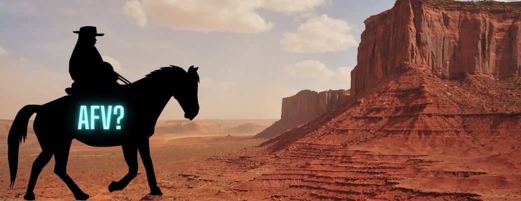 """Silhouette of a horse in the Arizona desert, emblazoned with """"AFV?"""""""