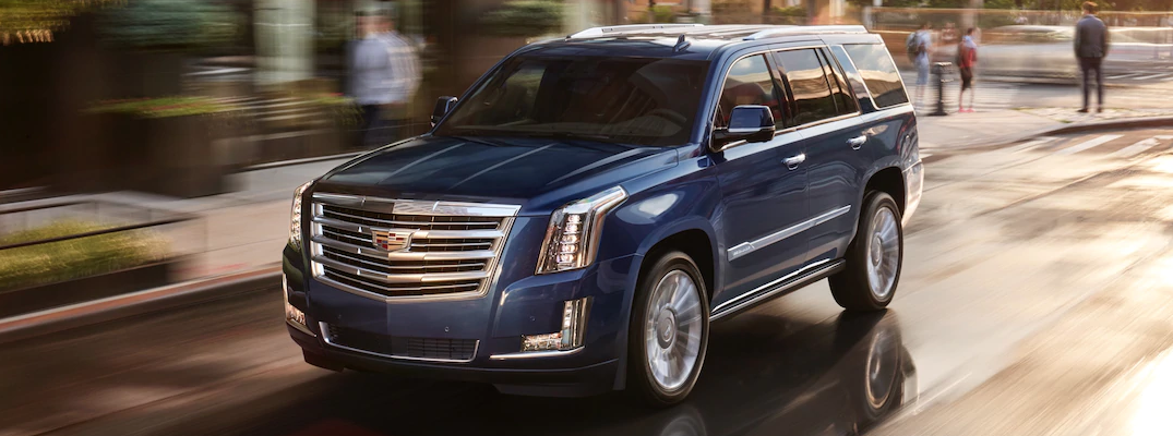 What are the Available Color Options for the 2019 Cadillac Escalade?