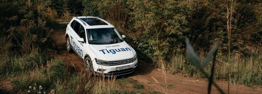 2021 Volkswagen Tiguan on a forest trail