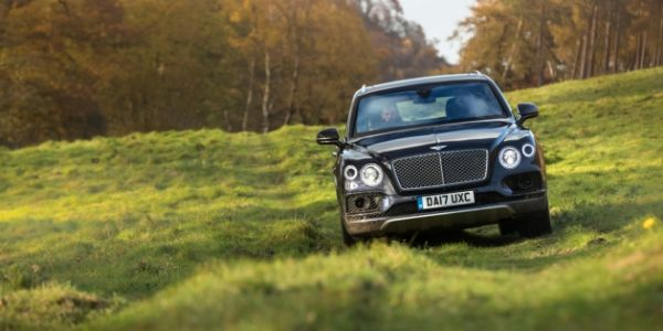 Black 2019 Bentley Bentayga in a Field